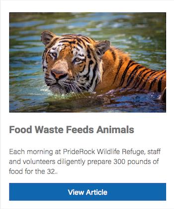 Food Waste Program Feeds Animals